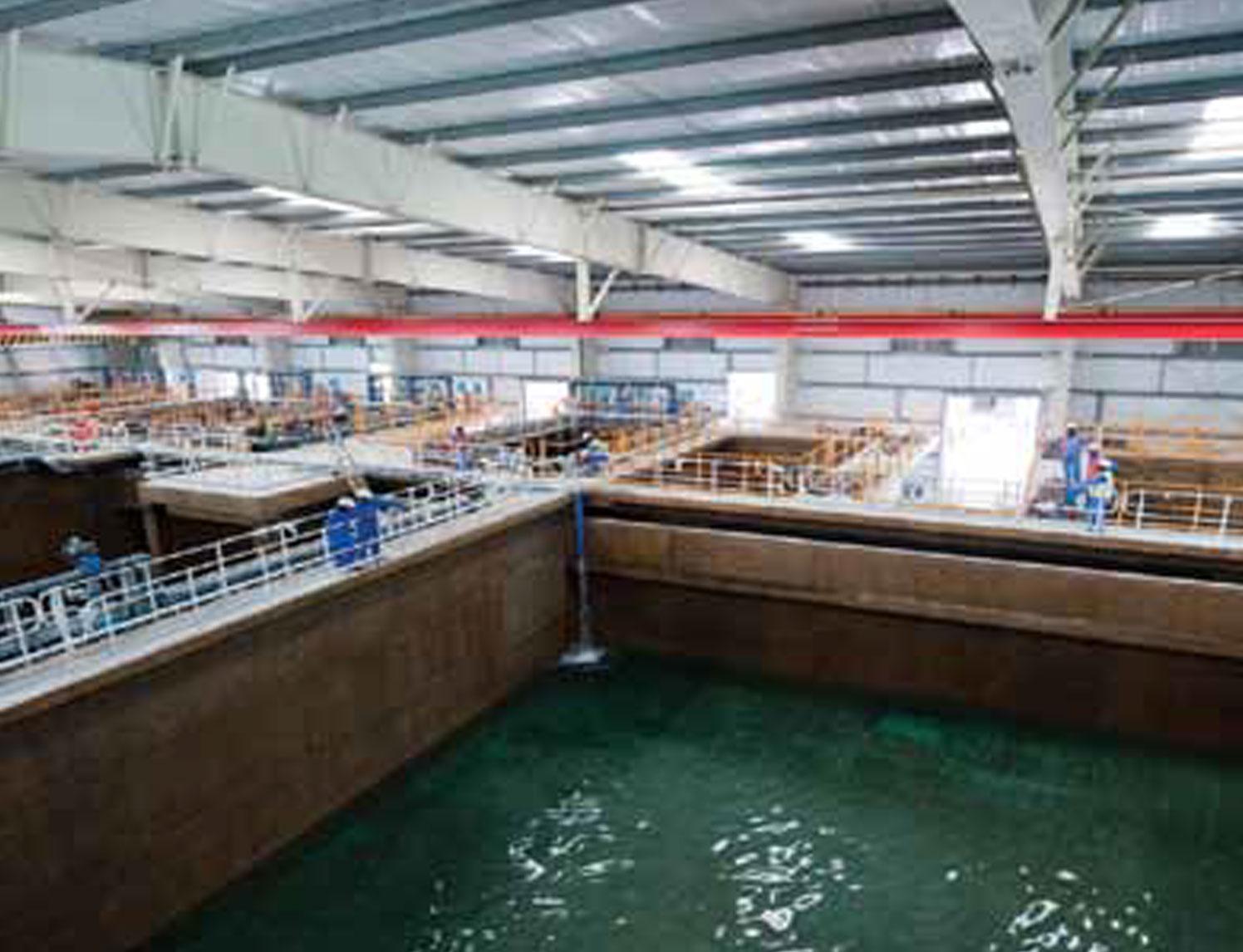 Sewage Treatment Projects